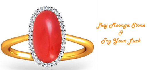 Red Coral Moonga Stone