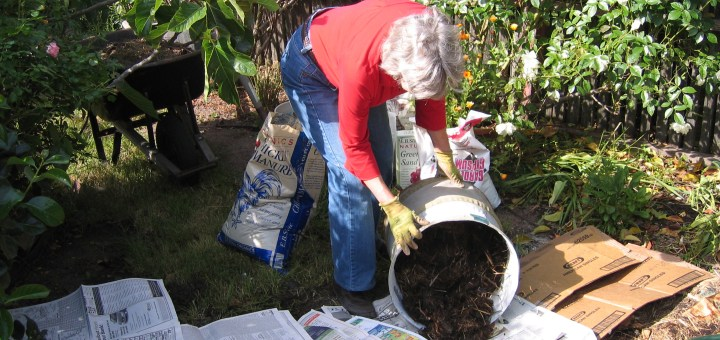 Black Wood Chips Mulch